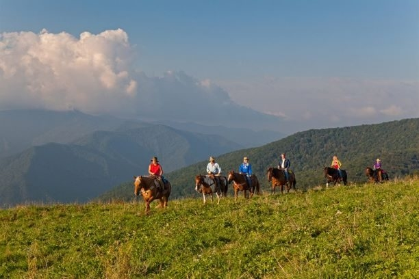 Cataloochee Ranch Horseback Rides & Cabins, North Carolina