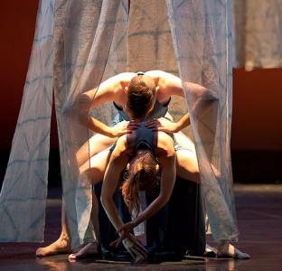 Asheville Ballet Guild