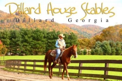 Dillard House Stables