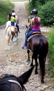 Horseback Riding in the Blue Ridge Mountains