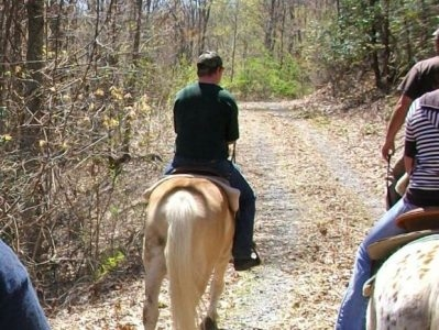 Saddle-Up Trail Rides