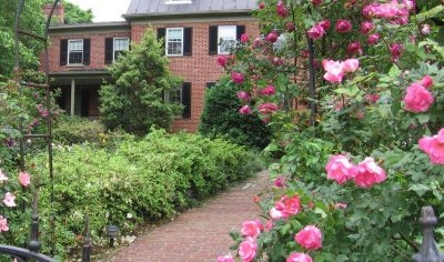 Jackson Rose Bed and Breakfast