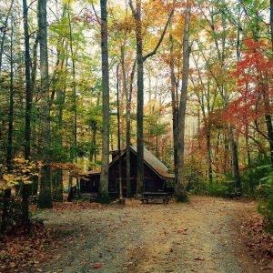 Cabin Fever Vacation Rentals