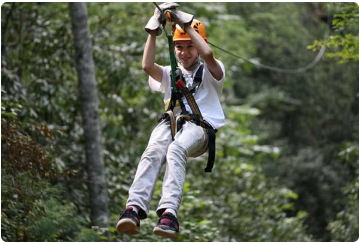 Nantahala Gorge Canopy Tours & Kid Zip