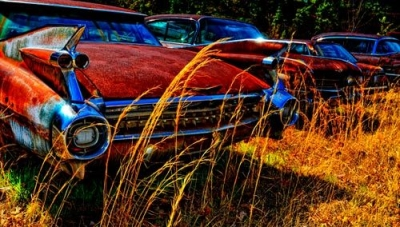 "Barbara Sammons ""Dusty Roads"" Art Exhibit"