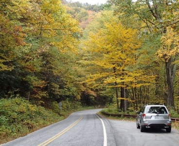 Blue Ridge Parkway Fall Foliage Update