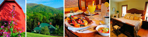 Honey Hill Inn and Cabins in Candler, NC