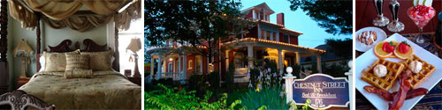 Chestnut Street Bed and Breakfast Inn, Asheville, NC