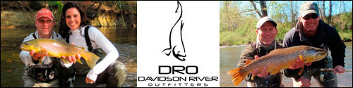 Click to visit the Davidson River Outfitters website.