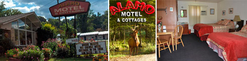 Alamo Motel and Cottages in Maggie Valley, NC