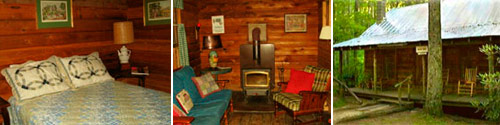 Cabin Fever Vacation Rentals Saluda NC