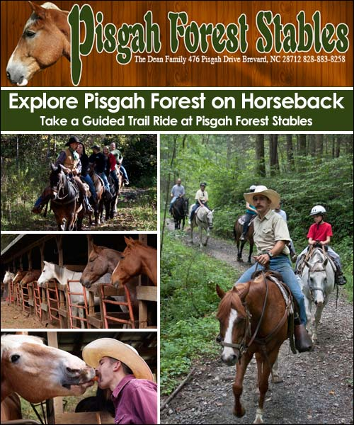 Pisgah Forest Stables, Brevard, NC