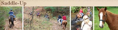 Saddle-Up Trail Rides, Mills River, NC