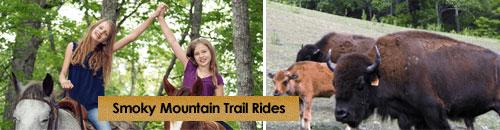 Smoky Mountain Trail Rides, Marshall, NC