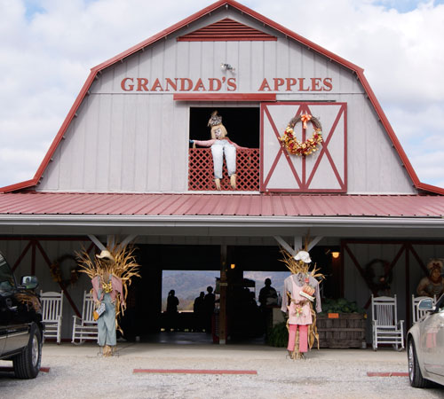 Grandad's Apples Orchard