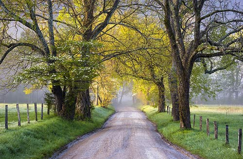 Photo of Sparks Lane in Cades Cove, taken by Dave Allen.