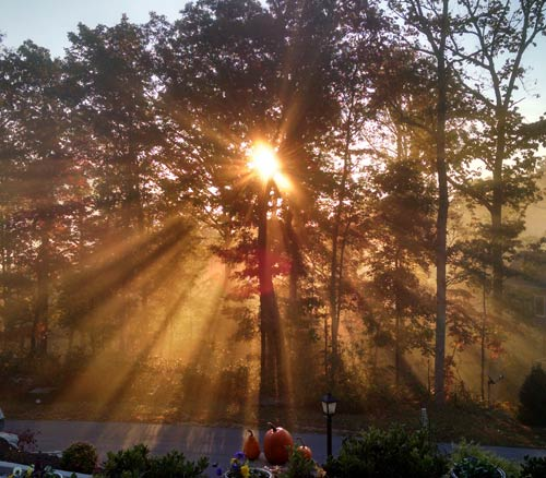 Sunrise Sun Beams, Fall, 2015-Leaves-Peaking
