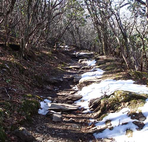 Snow on the Craggy Gardens Hiking Trail