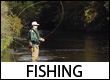 Blue Ridge Mountains Fishing Guides and Outfitters