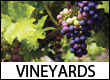 Wineries and Vineyards in the Blue Ridge Mountains of GA, MD, NC, PA, SC, TN, VA, & WV