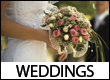 Weddings Venues and Event Planners in the Blue Ridge Mountains of Western NC, VA, GA and