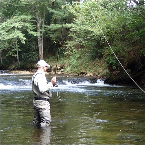 Fly Fishing Guides and Outfitters in the Blue Ridge and Great Smoky Mountains