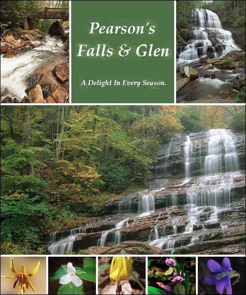 Pearson's Falls and Glen, Tryon, NC
